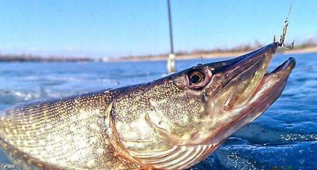 Рыбалка – увлекательное хобби, которое греет душу